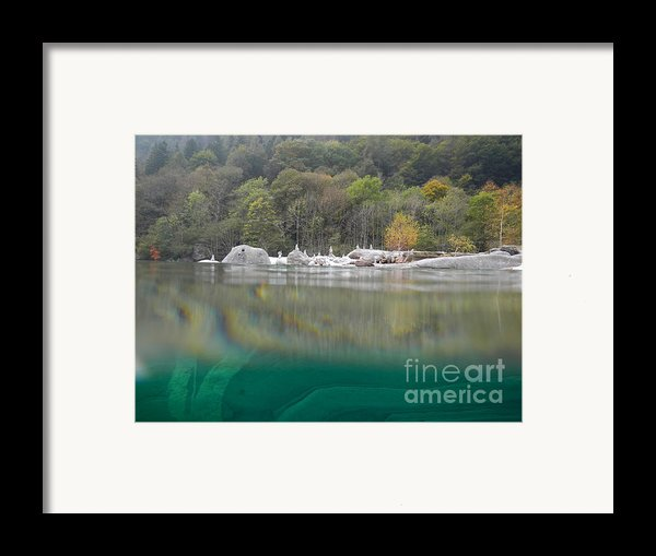 River With Trees Framed Print By Mats Silvan