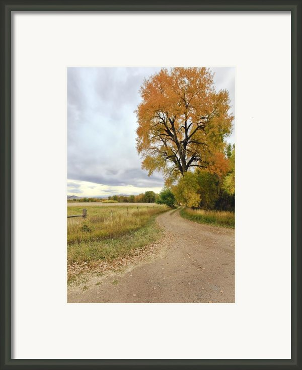 Road To Dads Place Framed Print By James Steele