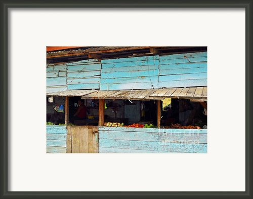 Roadside Fruit Stand- Belize Framed Print By Li Newton