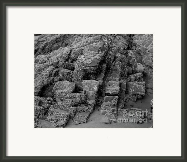 Rock Detail Oregon Coast Framed Print By Arni Katz
