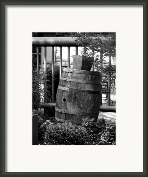 Roll Out The Barrel Framed Print By Shelley Blair