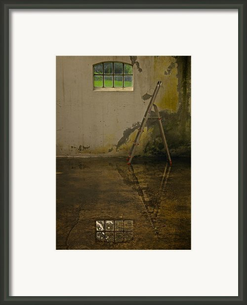 Room For Reflection Framed Print By Odd Jeppesen