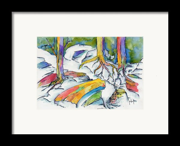 Roots And Rocks Framed Print By Pat Katz