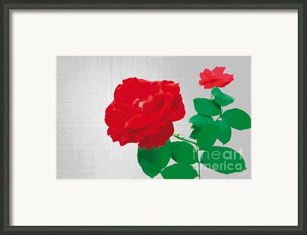 Rosepleasure-gray Framed Print By Eakaluk Pataratrivijit