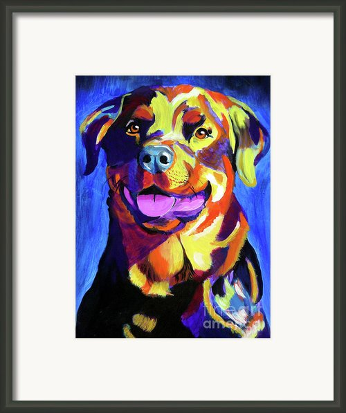 Rottweiler - Starr Framed Print By Alicia Vannoy Call