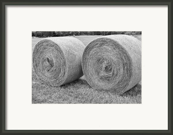 Round Hay Bales Black And White  Framed Print By James Bo  Insogna