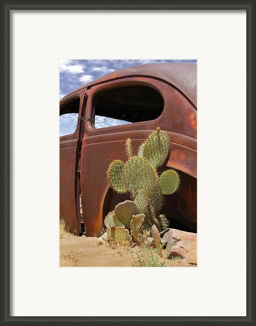 Route 66 Cactus Framed Print By Mike Mcglothlen