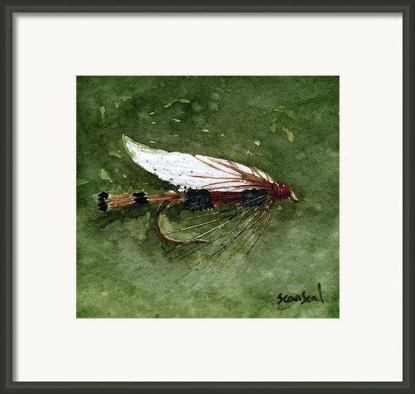 Royal Coachman Wet Fly Framed Print By Sean Seal