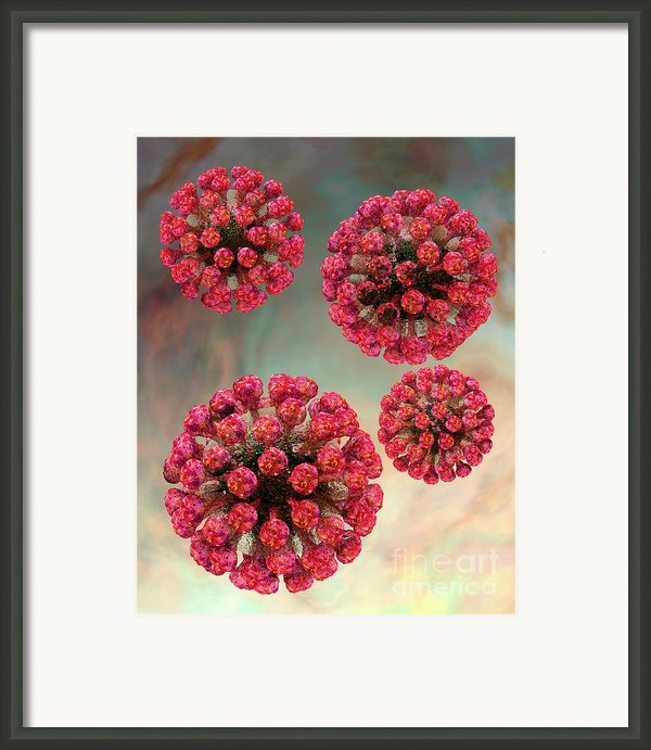 Rubella Virus Particles Framed Print By Russell Kightley