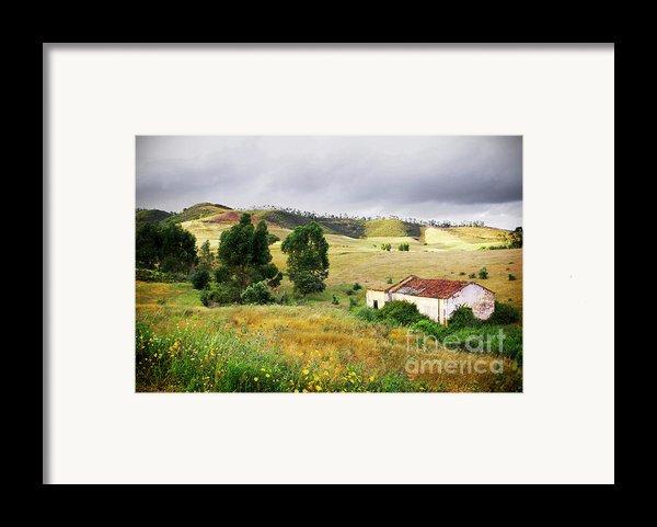 Ruin In Countryside Framed Print By Carlos Caetano