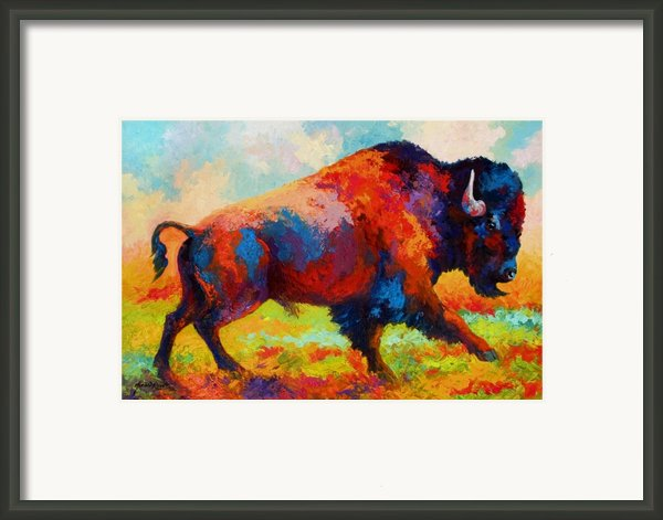 Running Free - Bison Framed Print By Marion Rose