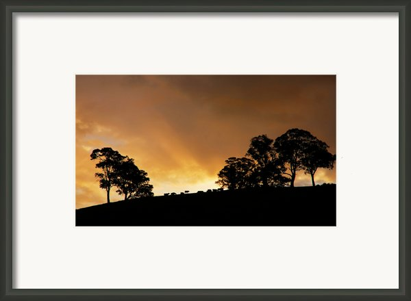 Rural Glory Framed Print By Mike  Dawson