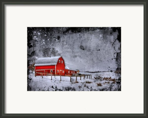 Rural Textures Framed Print By Evelina Kremsdorf