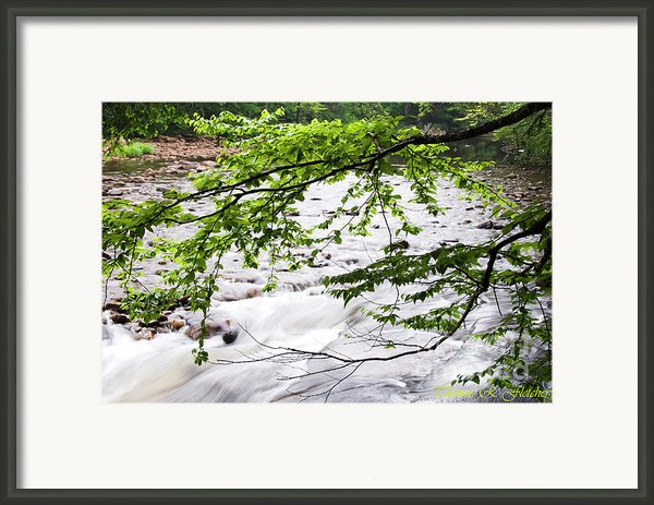 Rushing River Framed Print By Thomas R Fletcher
