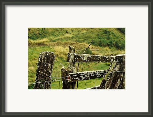 Rustic Fence Framed Print By Marilyn Wilson