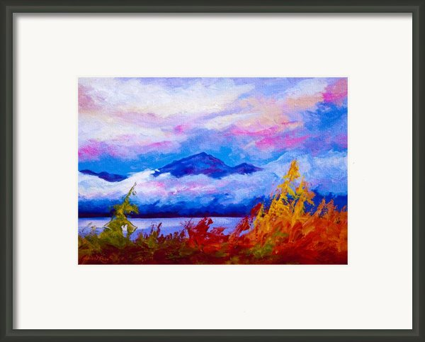 Rythmn Of The Arctic Framed Print By Marion Rose