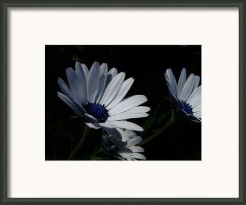Sadness And Yearning Framed Print By Edan Chapman