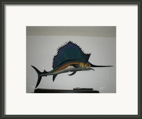 Sailfish Framed Print By Val Oconnor
