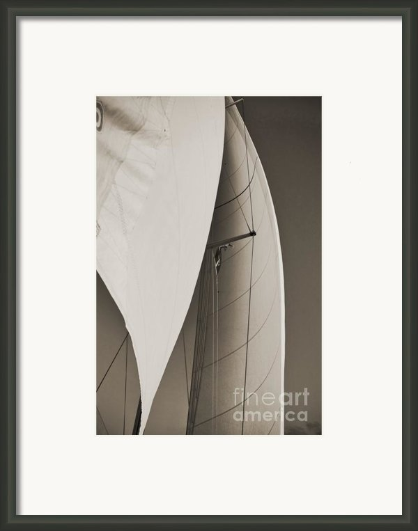 Sails Framed Print By Dustin K Ryan
