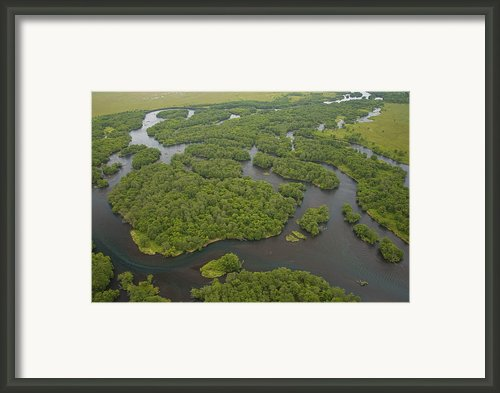Salmon Spawn In Kronotsky Nature Framed Print By Michael Melford