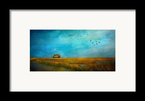 Salt Marsh Framed Print By Michael Petrizzo