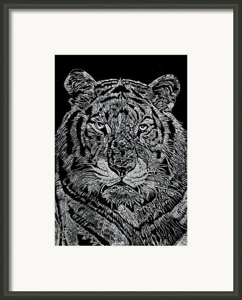Samson Framed Print By Jim Ross