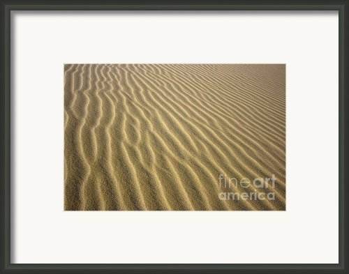 Sandhills Framed Print By Mothaibaphoto Prints
