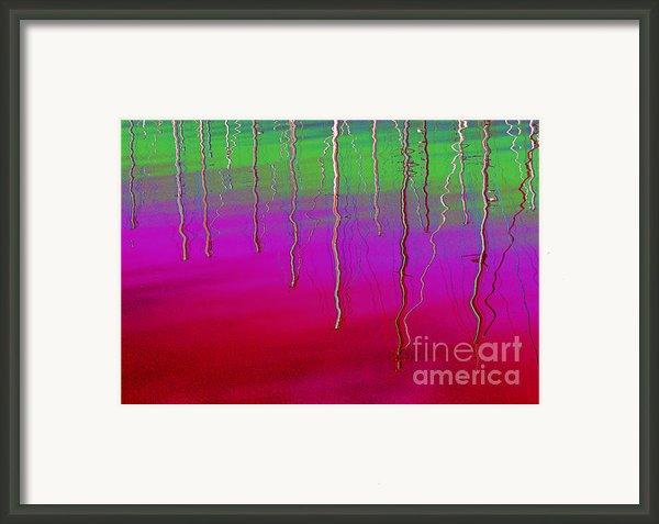 Sausalito Bay California In Color Framed Print By Ausra Paulauskaite