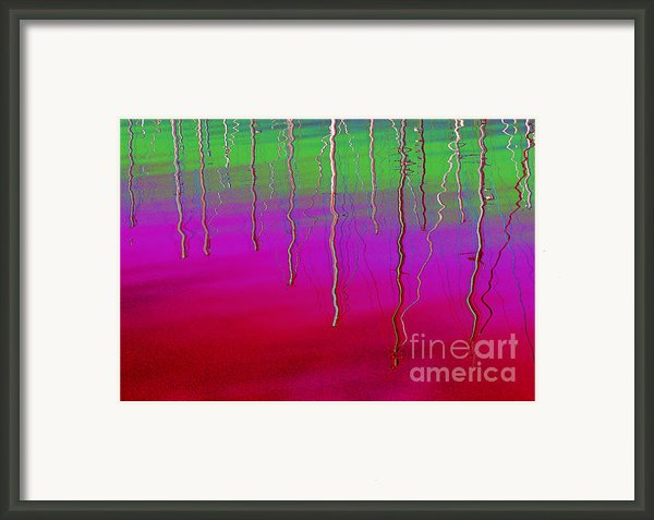 Sausalito Bay California In Color Framed Print By Ausra Paulauskaite