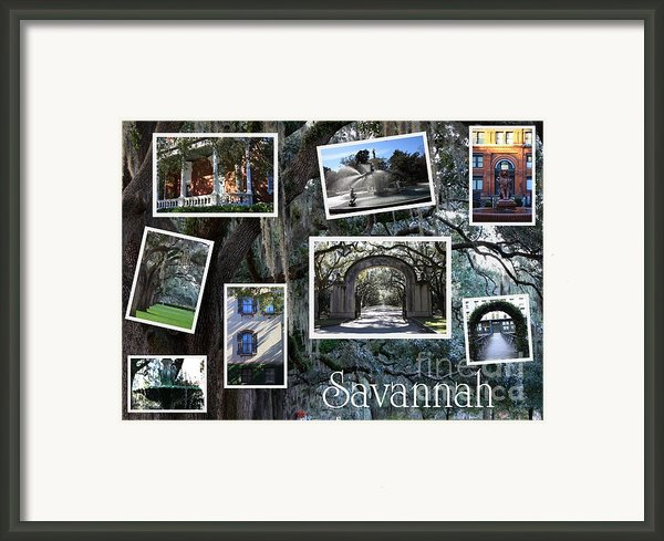 Savannah Scenes Collage Framed Print By Carol Groenen