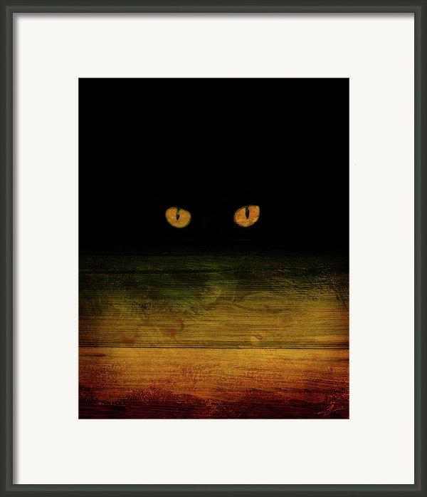 Scare-d-cat Framed Print By Shevon Johnson