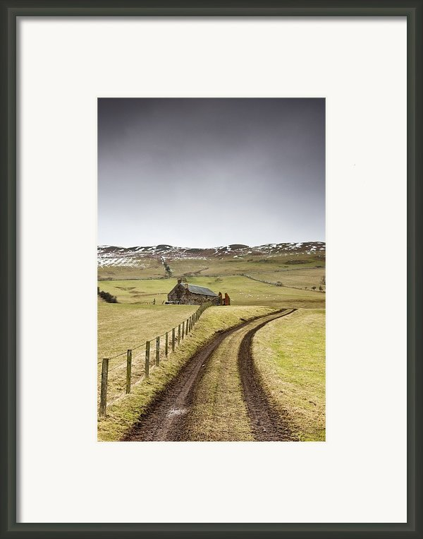 Scottish Borders, Scotland Tire Tracks Framed Print By John Short