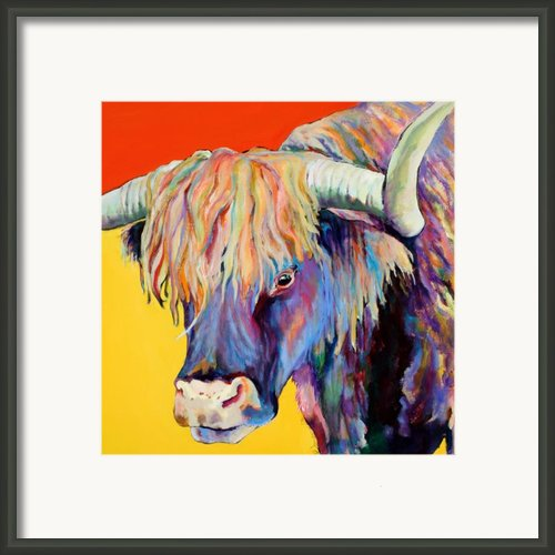 Scotty Framed Print By Pat Saunders-white
