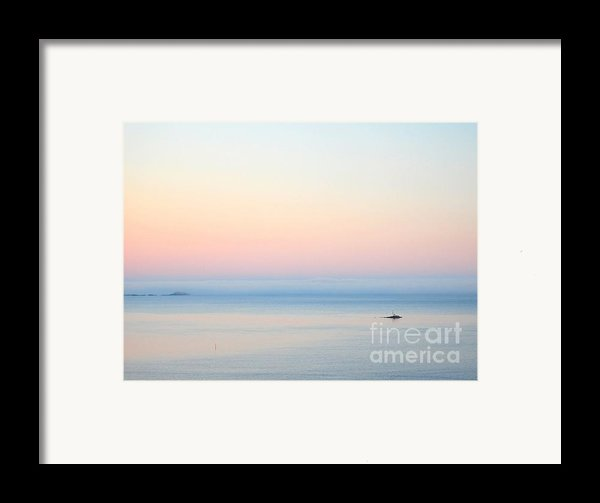 Sea Fog Framed Print By Sonya Kanelstrand