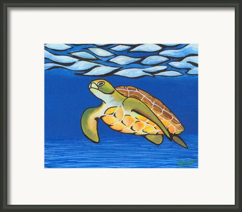 Sea Turtle Framed Print By Adam Johnson
