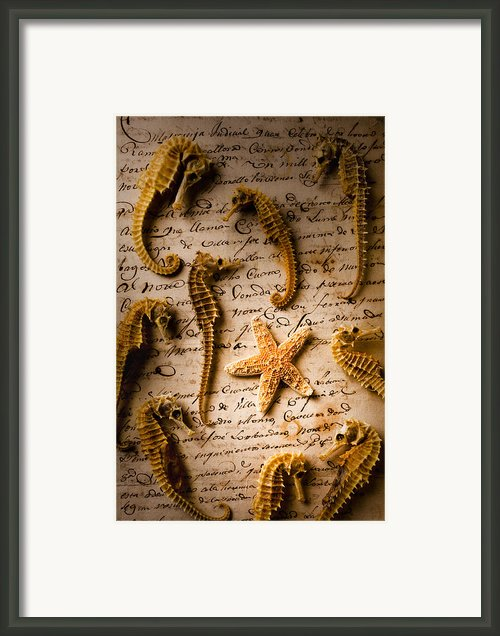 Seahorses And Starfish On Old Letter Framed Print By Garry Gay