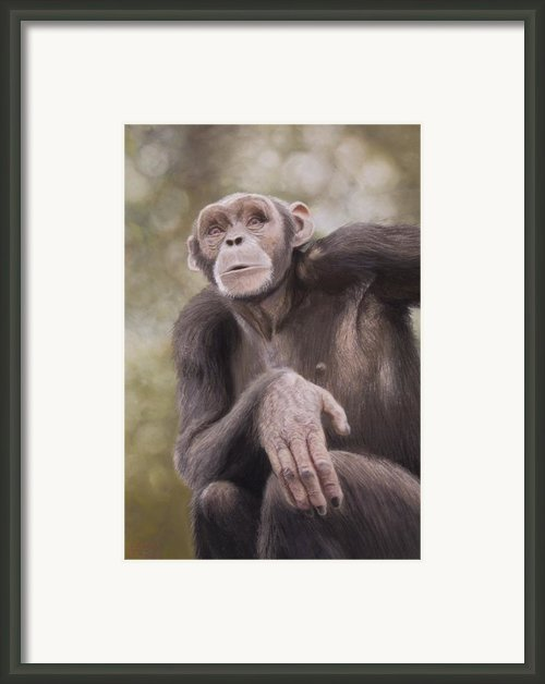 Searching For An Answer Framed Print By Leigh Rust