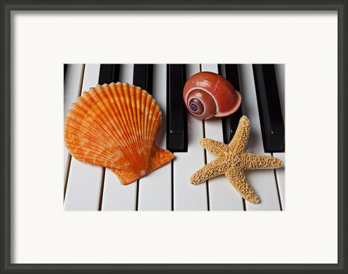 Seashell And Starfish On Piano Framed Print By Garry Gay