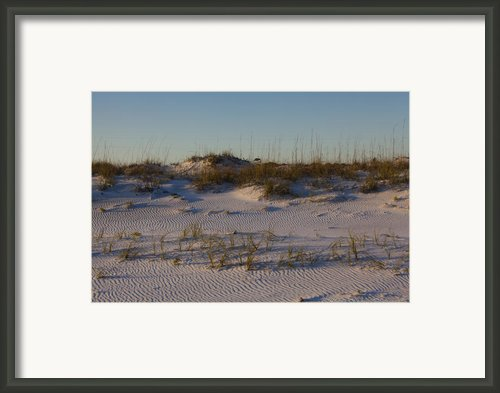 Seaside Dunes 4 Framed Print By Charles Warren