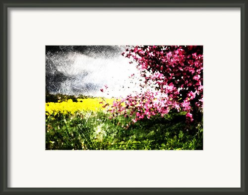 Secret Garden Framed Print By Andrea Barbieri
