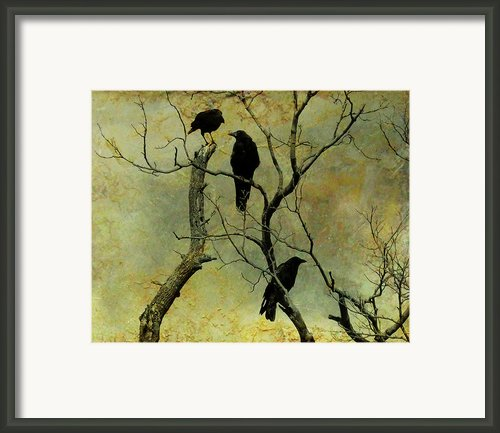 Secretive Crows Framed Print By Gothicolors And Crows