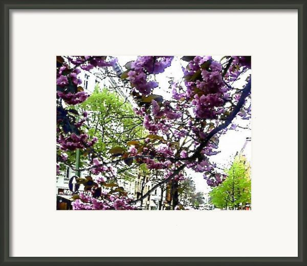 See You Next Spring Framed Print By Navo Art