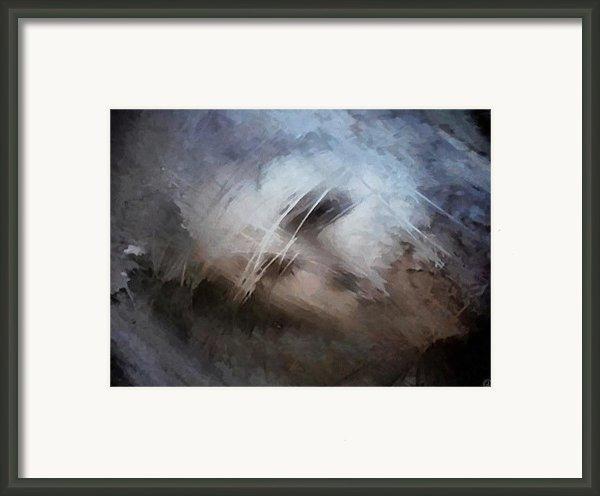 Seeking Rest Framed Print By Gun Legler