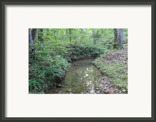 Serene Green  Framed Print By James Collier