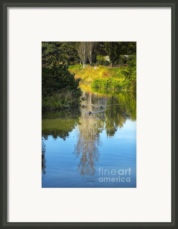 Serene Reflection Framed Print By Julie Palencia