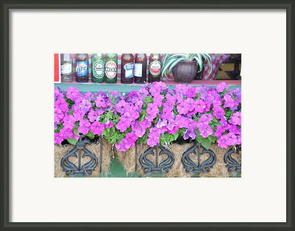 Seven Bottles Of Beer On The Wall Framed Print By Jan Amiss Photography