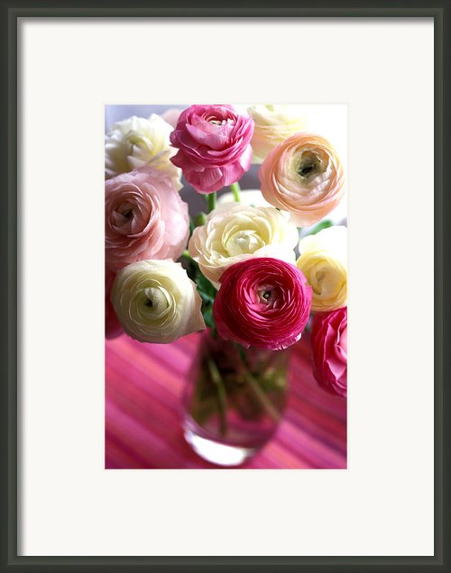 Shades Of Pink Framed Print By Kathy Yates