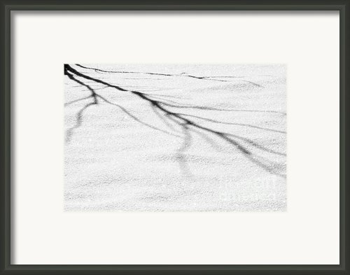 Shadows Of Winter Framed Print By Christine Till