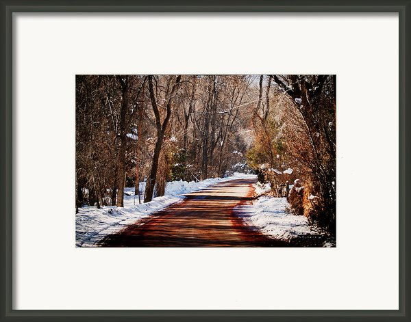 Shadowy Path Framed Print By Lisa  Spencer