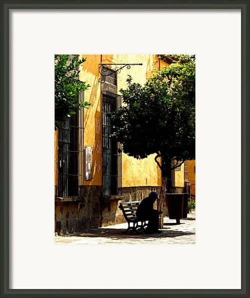 Shady Bench Framed Print By Olden Mexico